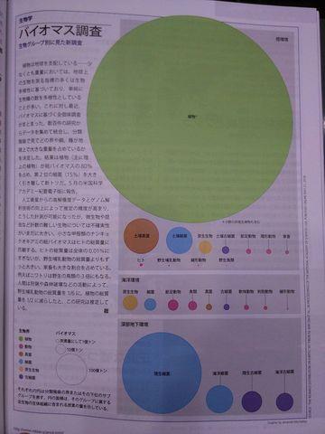 生物グループ別のバイオマス量s.jpg